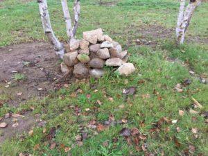 焚き火用の石